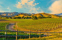 wine country of southern oregon